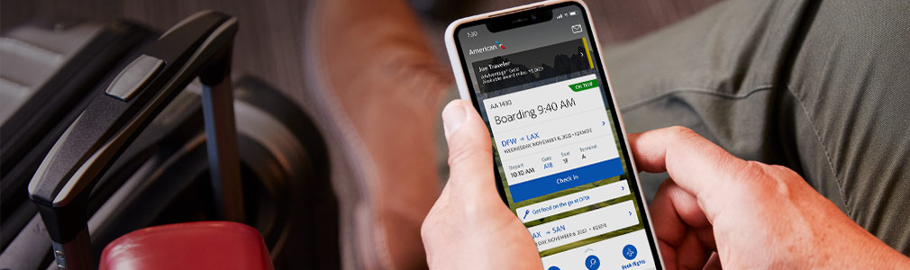 Boarding pass and flight information on the app